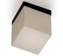 Светильник настенно-потолочный ODEON 2043/1C CUBET