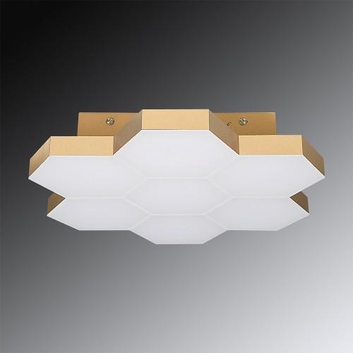 Люстра подвесная LIGHTSTAR 750073 FAVO