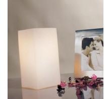 Лампа настольная PAULMANN 770.31 VILMA