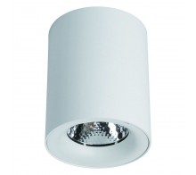 Светильник светодиодный накладной ARTE LAMP A5112PL-1WH Facile