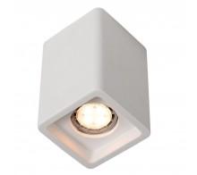 Светильник потолочный накладной ARTE LAMP A9261PL-1WH TUBO